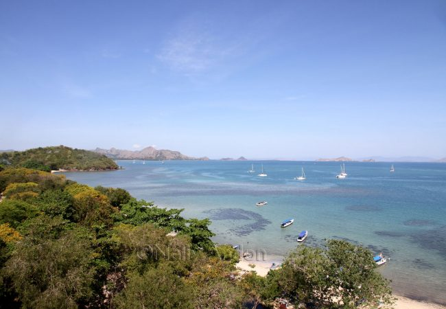 The start of our Flores adventure, Labuan Bajo and beyond, the gateway to the Komodo Islands.